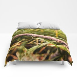 Stick in the Grass Comforters