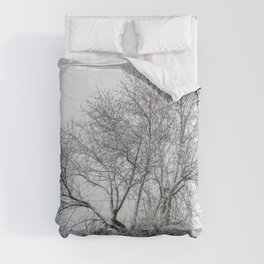 Snowy naked tree Comforters