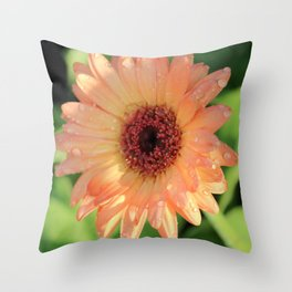 Daisies and Dew Drops Throw Pillow