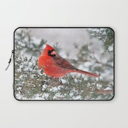 Winter's Beauty Cardinal Laptop Sleeve