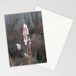 Cat Tail Stationery Cards