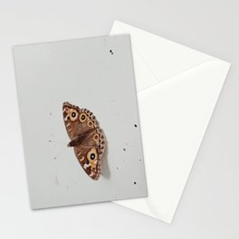 BROWN - AND - BLACK - BUTTERFLY - ON - WHITE - WALL - PHOTOGRAPHY Stationery Cards