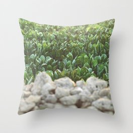 Nature photography, home furnishings, fine art, kitchen wall decor, South Italy, Sicily, Apulia, Throw Pillow
