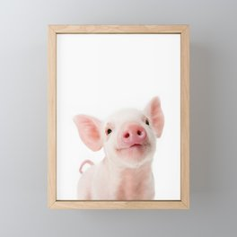 Baby Piglet Portrait Framed Mini Art Print