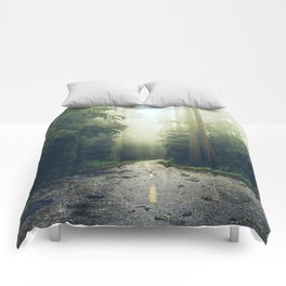 Redwood Forest Adventure - Nature Photography Comforters