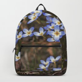 Wild Flowers Bluets Backpack