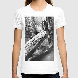 De Brazza on a Log T-shirt