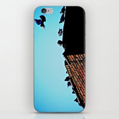 Looking for a Place to Land iPhone & iPod Skin