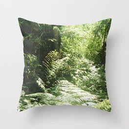 Iguazú Dream Throw Pillow
