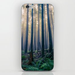 Tillamook Head iPhone Skin
