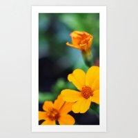 orange & turquoise Art Print