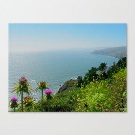 As Far As The Eye Can Sea Canvas Print