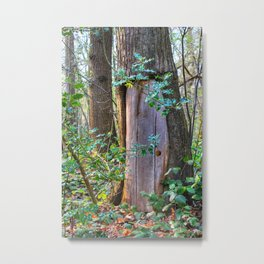 Portal To Wonderland Metal Print