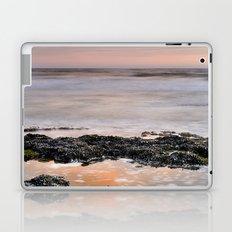 Marine life Laptop & iPad Skin