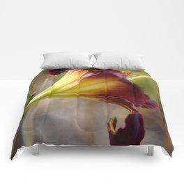 The Backside of Velveteen Comforters