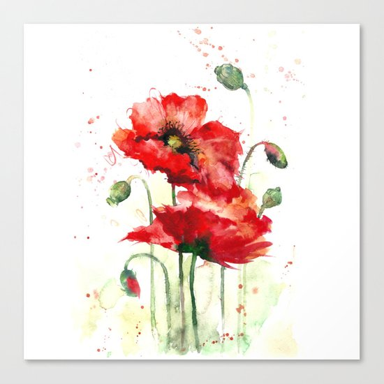 Watercolor flowers of aquarelle poppies Canvas Print