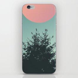 Pine tree and birds iPhone Skin