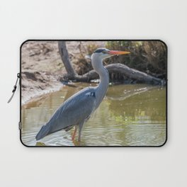Gray heron reflected in the water of the pond Laptop Sleeve