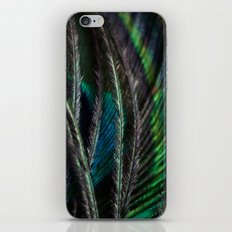 Each Feather iPhone & iPod Skin