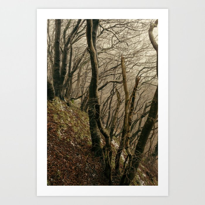 ENCHANTED FOREST / 02 Art Print