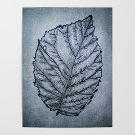 b&w leaf Poster
