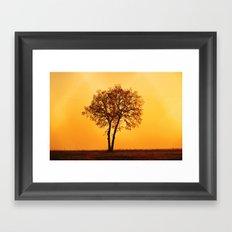 Sunrisre  Framed Art Print