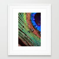 peacock feather Framed Art Prints featuring peacock feather by Falko Follert Art-FF77