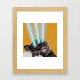 lasercat Framed Art Print