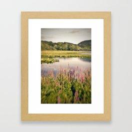 Lake Lomo Framed Art Print