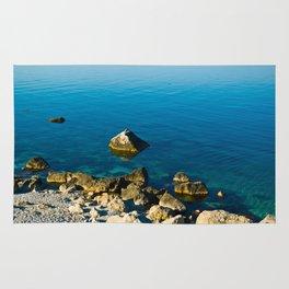 calm sea at the shore Rug
