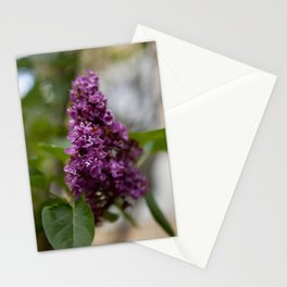 Fresh Purple Lilac Stationery Cards