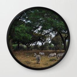 Zebras. Wall Clock
