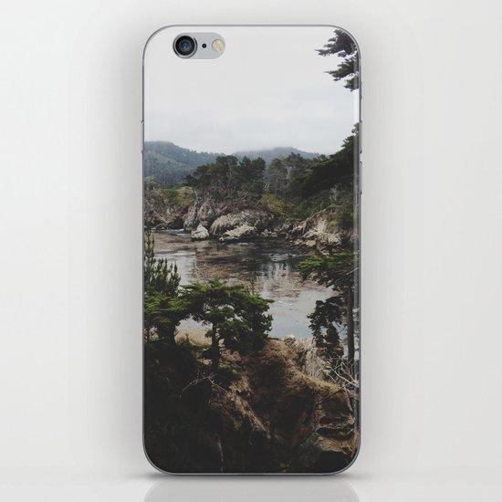 Bluefish Cove iPhone Skin