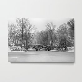 Stone Bridge at Clove Lakes Staten Island Metal Print