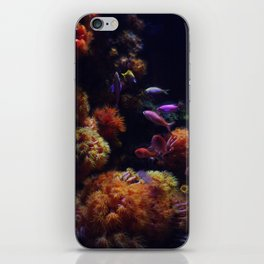 tropical sea iPhone Skin