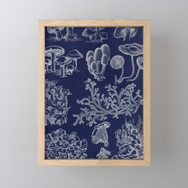 Fungus And Lichen Chart Framed Mini Art Print