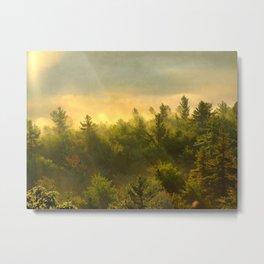 golden fog forest I Metal Print