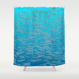 Sardines - Stay in School Shower Curtain