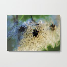 Angel Seeds Metal Print