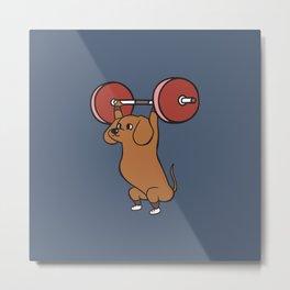 The snatch weightlifting Dachshund Metal Print