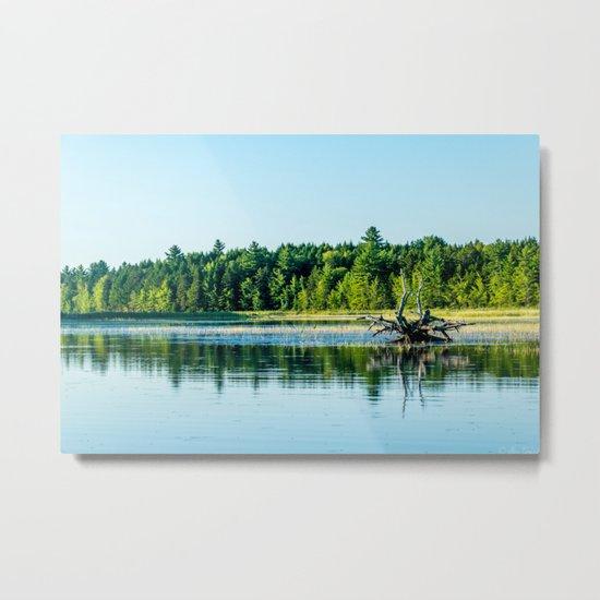 Driftwood Reflection Metal Print