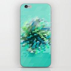 Cluster 2 iPhone & iPod Skin