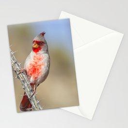 Desert Cardinal Stationery Cards