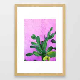 Cactus on Pink Wall Framed Art Print