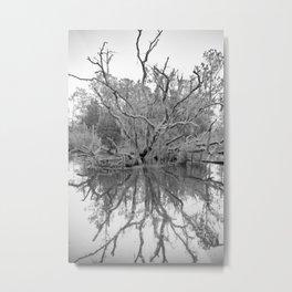 Lowcountry Snow Metal Print