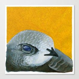 Swift Portrait Canvas Print