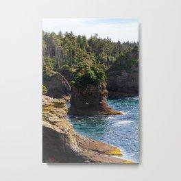 Cape Flattery Metal Print