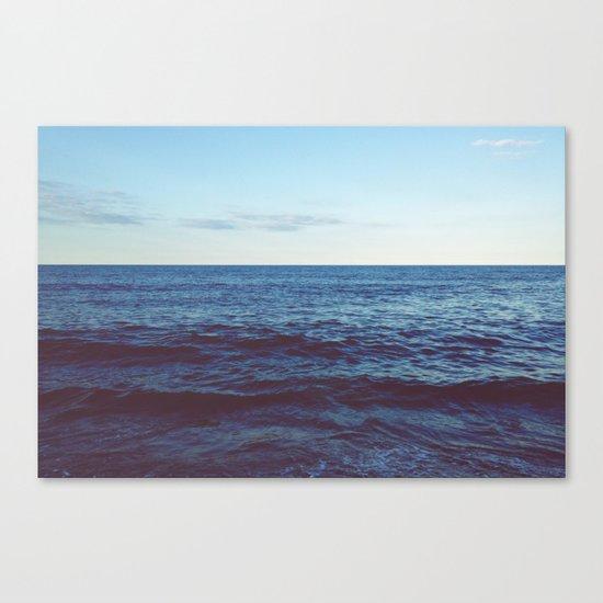 Truely Wild Canvas Print