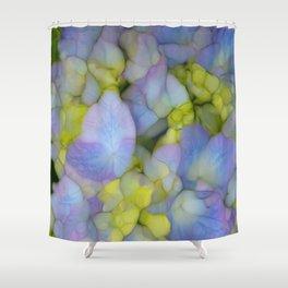 hydrangea blue floral Shower Curtain