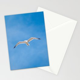 Great Black-backed Gull - blue sky 44 Stationery Cards